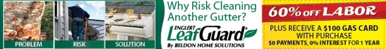 Leaf Guard -