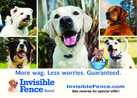 Invisible Fence - Canine Control East