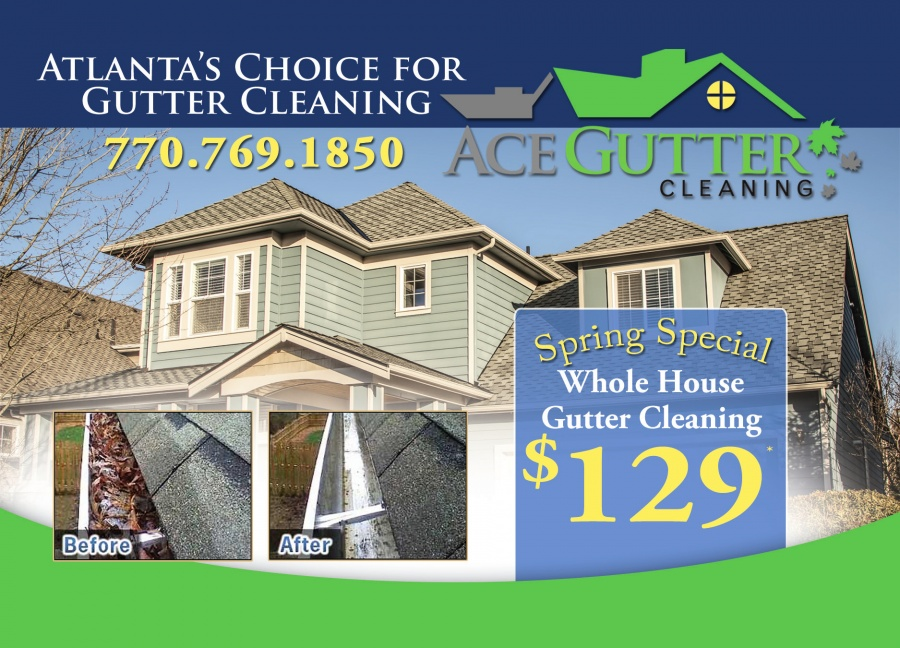 Ace Gutter Cleaning