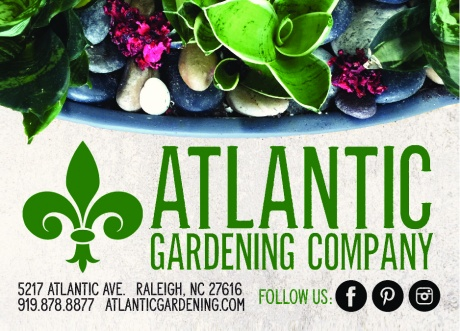 ... Atlantic Avenue Orchid And Garden ...