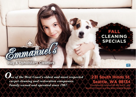Emmanuel's Rug & Upholstery Cleaners