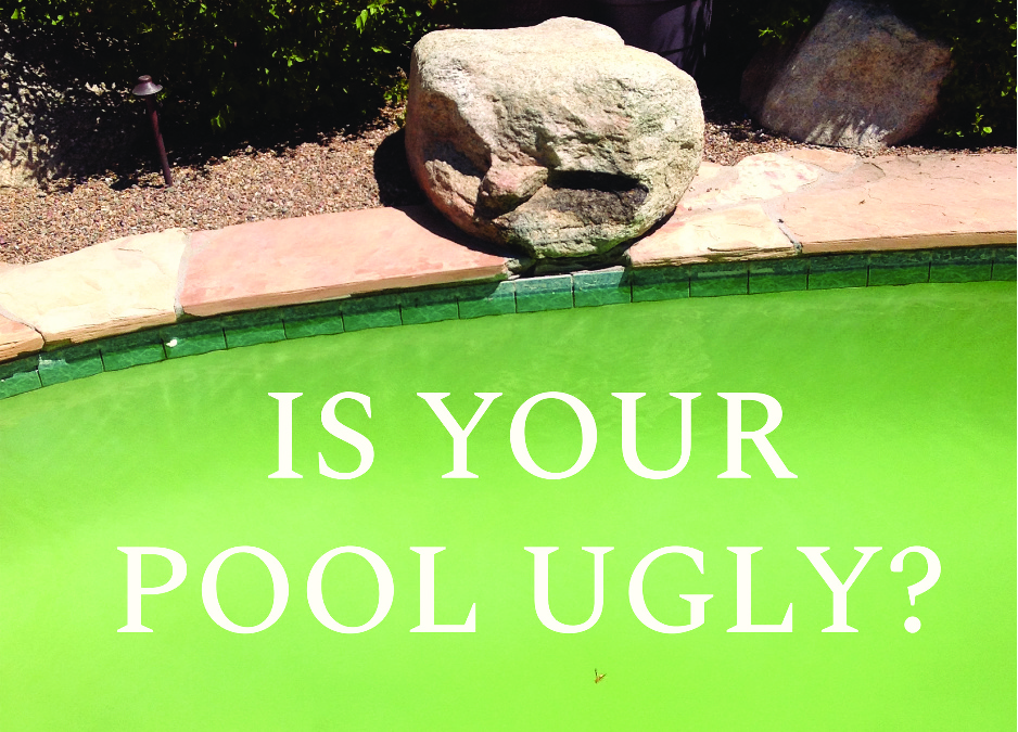 We Live For Designing And Building Custom Pools And Outdoor Living Spaces.