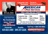 American Pest Services