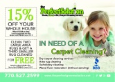 The Perfect Solution Dry Carpet Cleaning