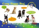 Camp Happy Dog